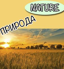 nature in russian